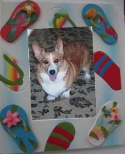 Toby and flip flop frame